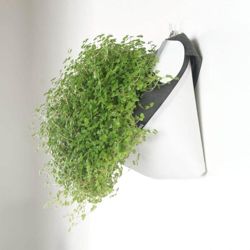 Zidna Posuda za biljke Walligami