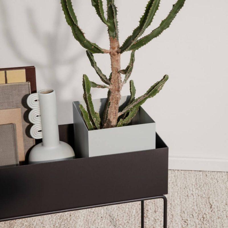 Posuda za Plant box