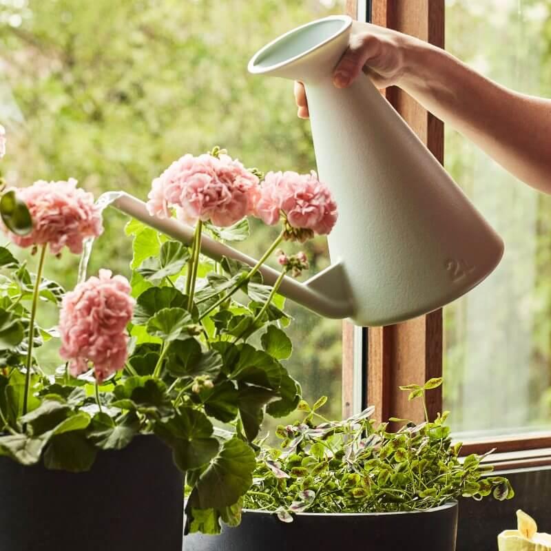 Posuda za zalijevanje watering can