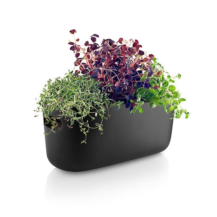 organizator za biljke